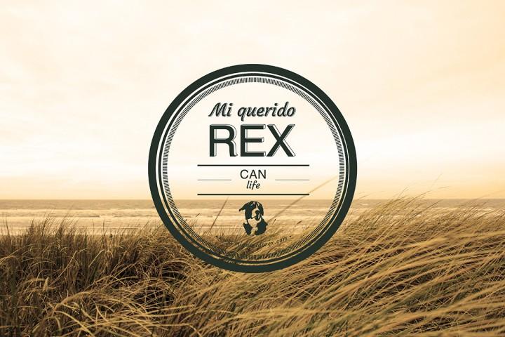 Rex_destacada